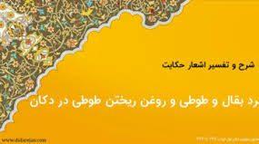 ماجرای طوطی و قیاس های غلط | دکتر محمود انوشه