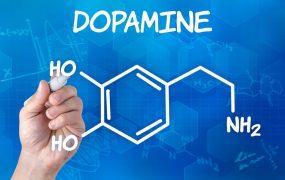راه رسیدن به نشاط دائمی / ارتباط دوپامین با لذت!