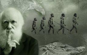 داروینیسم و خلقت هوشمند جهان هستی